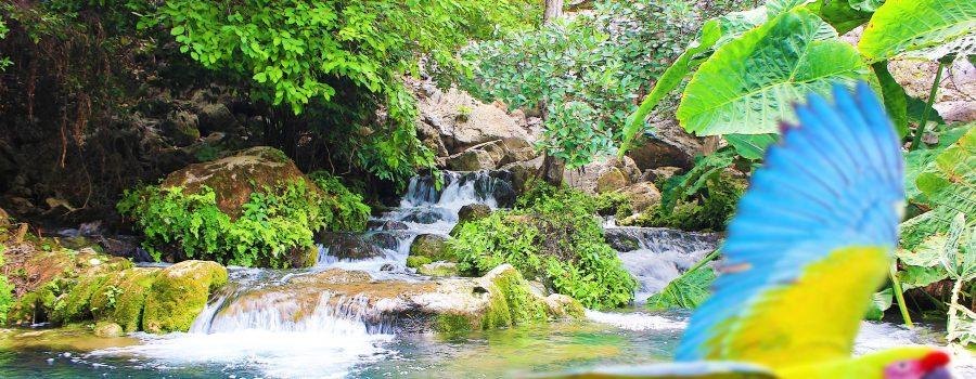 Tamaulipas: Adrenalina y naturaleza